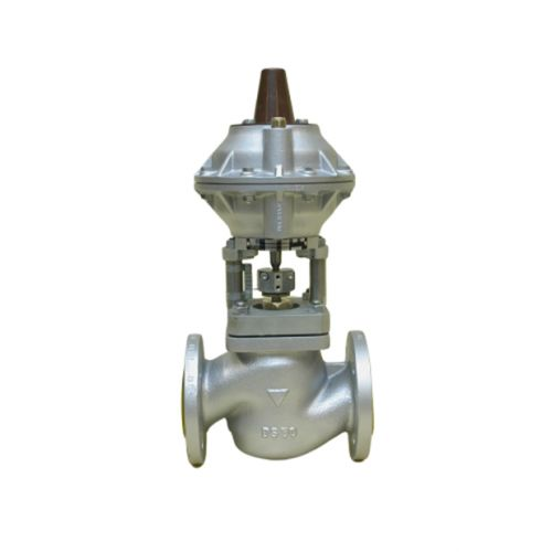 Pneumatic steam valve | BR.10.014