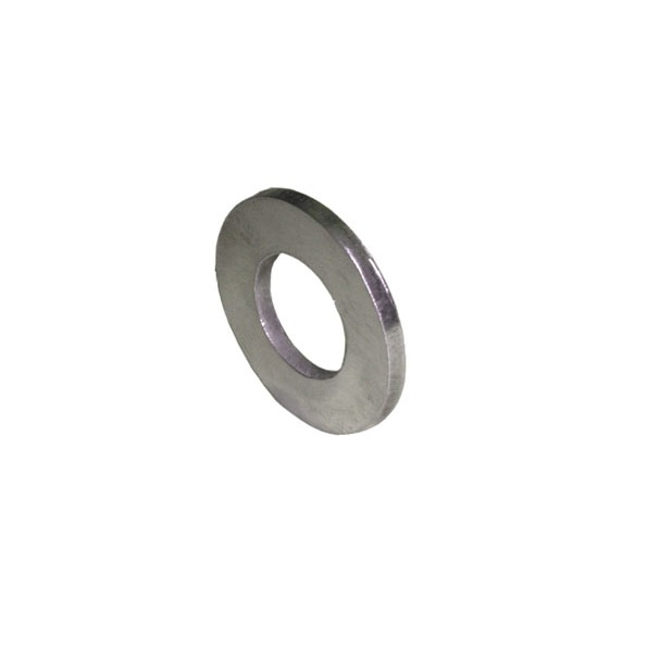 S.S. flat washer M12 special | PL.20.039